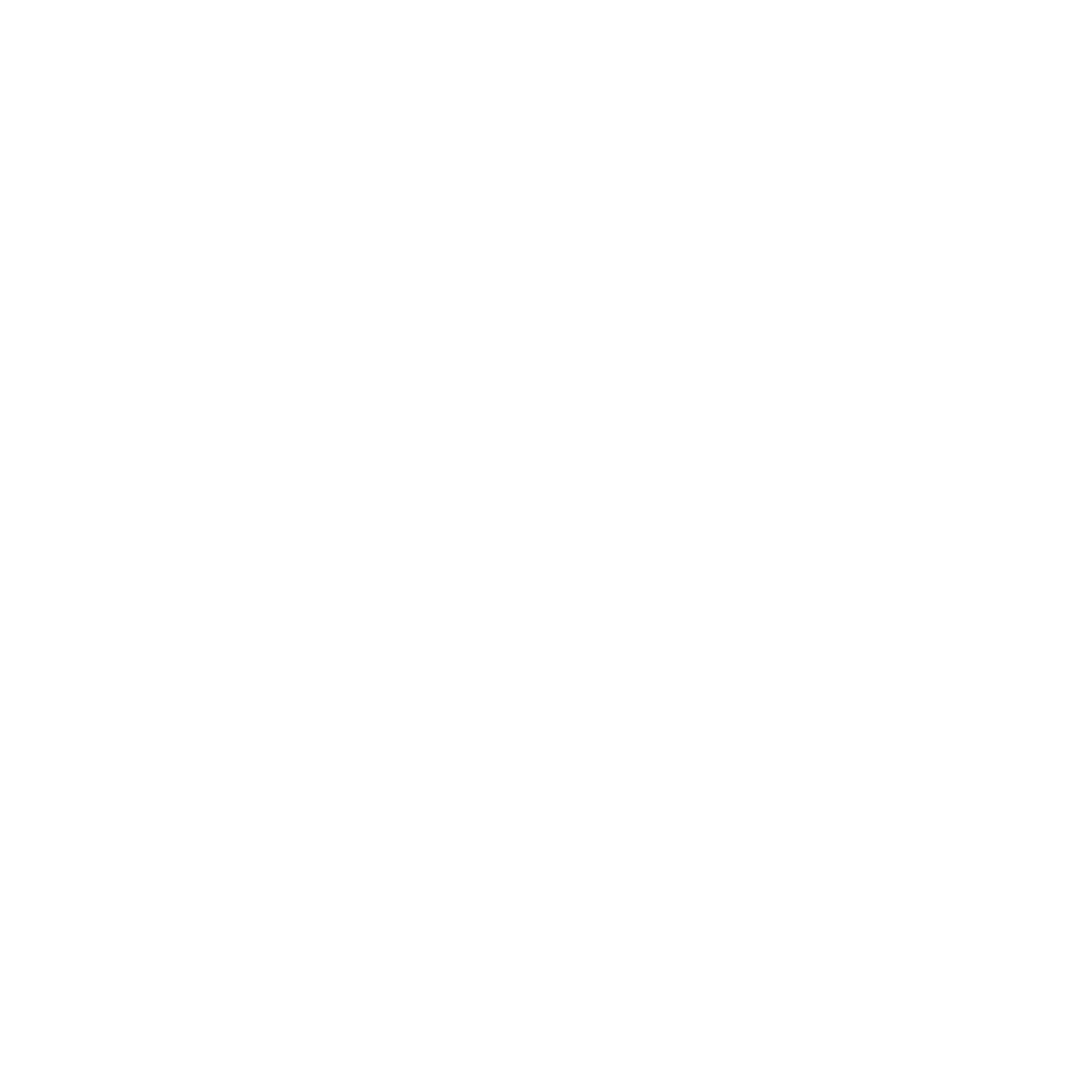Equip Icon White